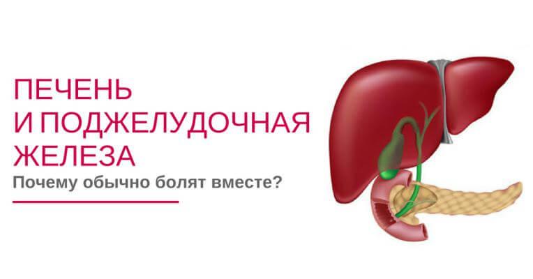 Печень и поджелудочная железа тесно связаны с состоянием желчного пузыря и микрофлорой кишечника. Как изменить питание, восстановить желчеотделение, микрофлору и устранить глубокие причины холецистопанкреатита с помощью натуральных средств за месяц.